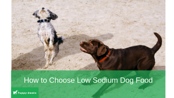 What is the best low sodium dog food?
